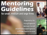 Mentoring Guidelines for Small, Medium and Large Firms.